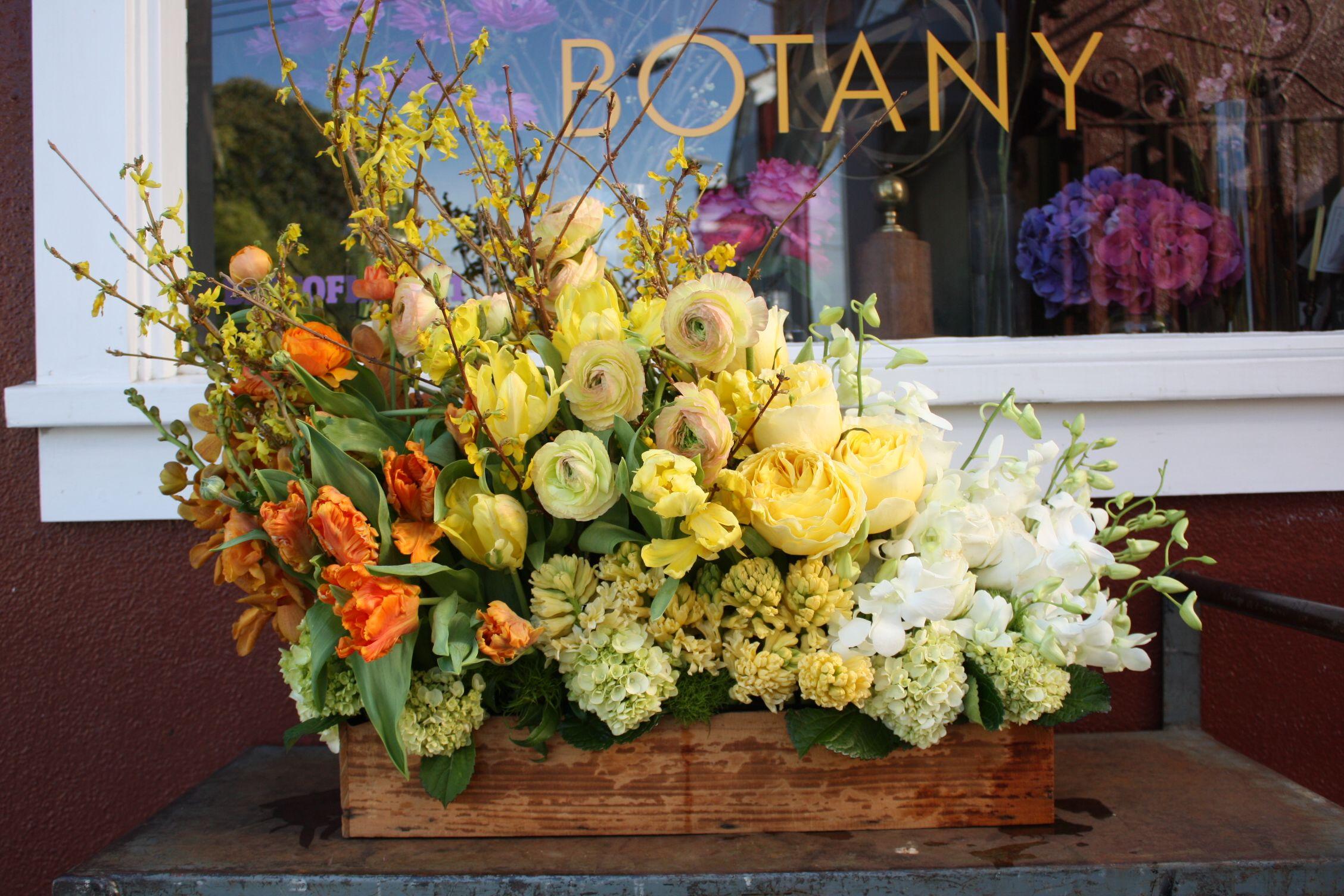 forsythia, parrot tulips, hyacinth, ranunculus