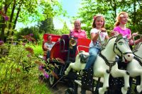 """""""Pferdekutschfahrt im Erlebnispark"""" Natur"""