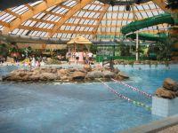 """""""Das Schwimmbad"""" Ferienpark Landal De Lommerbergen (Reuver ..."""