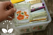 Seed Starting Tips for Beginner Gardeners