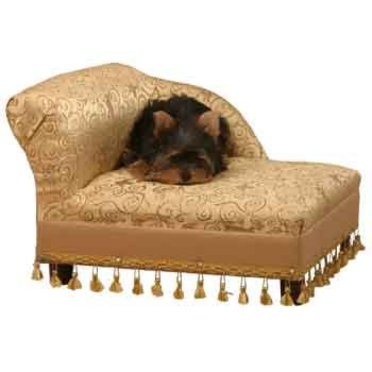 mini dog sofa fancy table bed a listly list