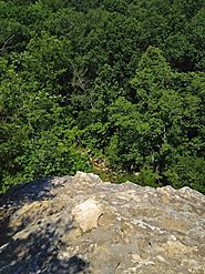 Rock Bridge Memorial State Park