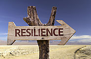 Academic Resilience and the Four Cs: Confidence, Control, Composure, and Commitment