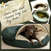 Snoozer Cozy Cave Dog Beds Reviews