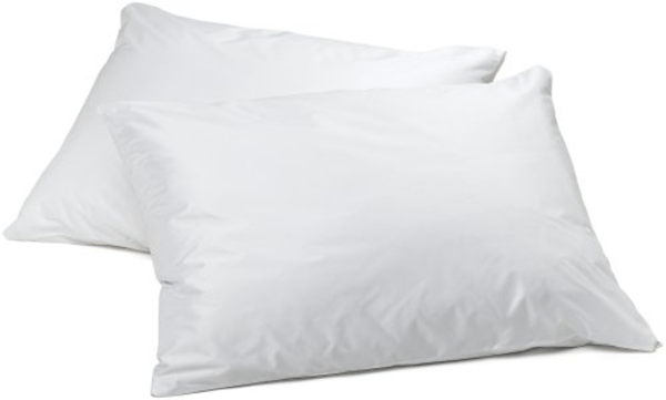 Top 10 Best Hypoallergenic Bed Pillows 2014  A Listly List