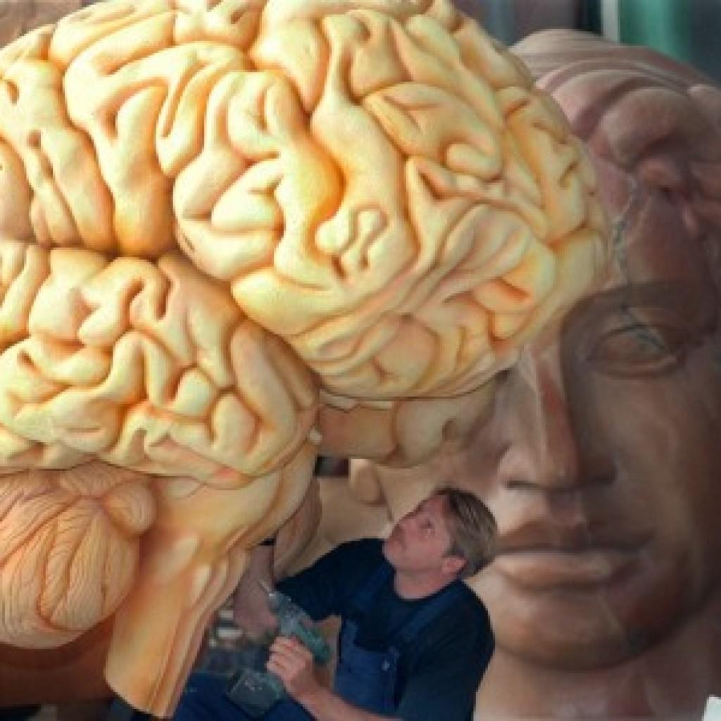 """Tim Parks' Buch """"Bin ich mein Gehirn?"""": Inspektor Columbo und die grauen Zellen"""