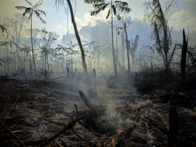 Klimabuch von Frank Schätzing: Schreibhausgase