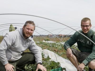 Nachhaltigkeit: Wo ein neues Ökokisten-Angebot entsteht