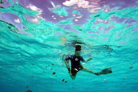 Combo Managaha Island Tour And Marine Activity