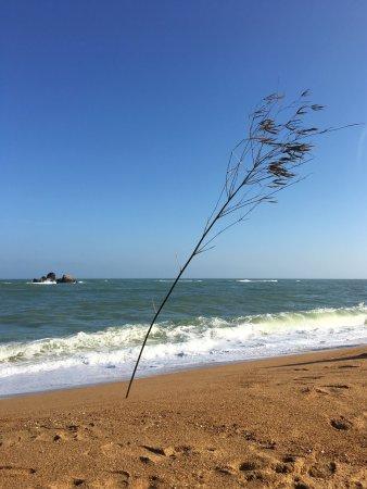 (瓊海市, 中國)博鰲玉帶灘 - 旅遊景點評論 - TripAdvisor