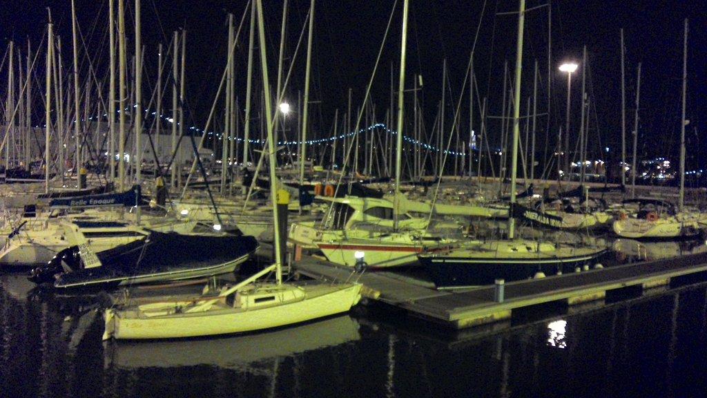 Cervejaria Portugalia  Almirante Reis Lisbona  Ristorante Recensioni Numero di Telefono
