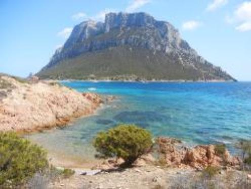 L'Area Naturale Marina Protetta Tavolara - Punta Coda Cavallo
