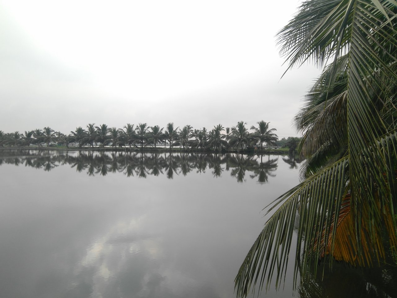 Akshay Homestay Prices Lodge Reviews Kochi Cochin