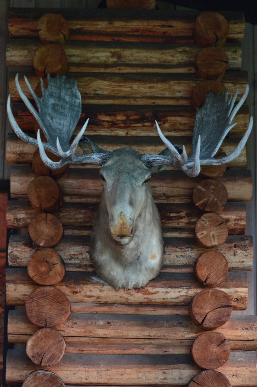 Moose Lake Ranch : moose, ranch, MOOSE, RANCH, Prices, Reviews, (Wyoming), Tripadvisor