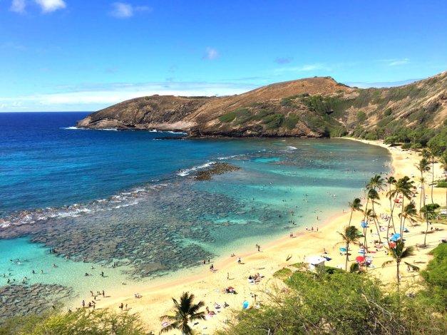 Promociones hawaianas del océano - excursiones de un día