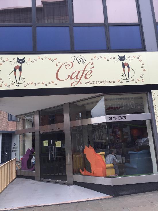 Kitty Cafe Nottingham  Restaurant Reviews Phone Number