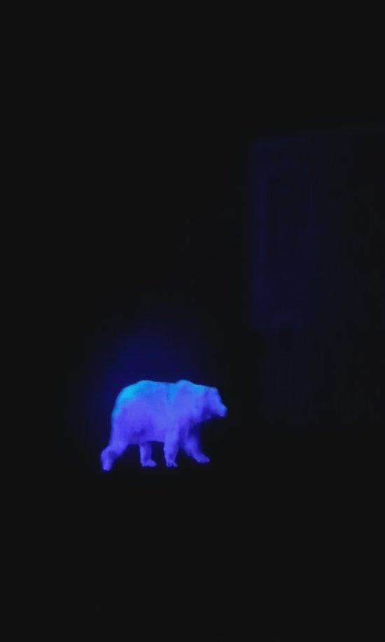 nuits lumiere bourges tripadvisor