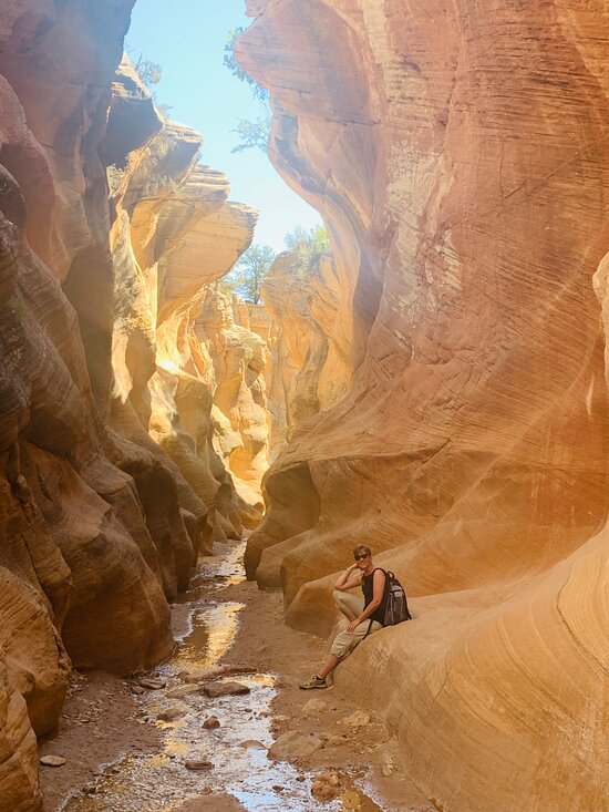 Willis Creek Narrows : willis, creek, narrows, Willis, Creek, Canyon, (Cannonville), BEFORE, (with, Photos), Tripadvisor