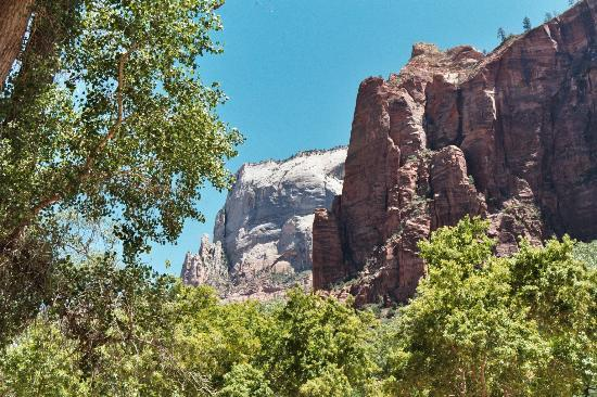 Temple of Sinawava Trail Zion National Park UT Address Tickets  Tours Attraction Reviews  TripAdvisor