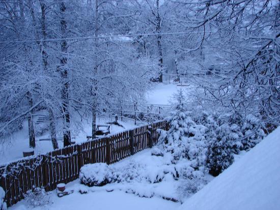 snow-scenes_555.jpg
