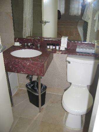 bagno piccolo senza finestra ma funzionale  Foto di Hotel Metro New York City  TripAdvisor