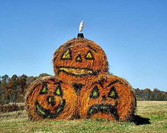 Halloween en Georgie, États-Unis, par un membre de TripAdvisor.fr