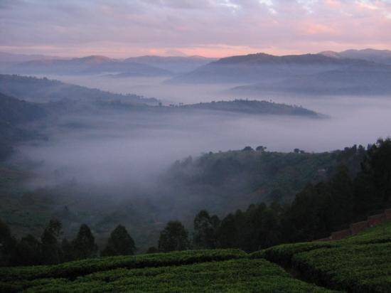 Rwanda view. From Tripadvisor.com