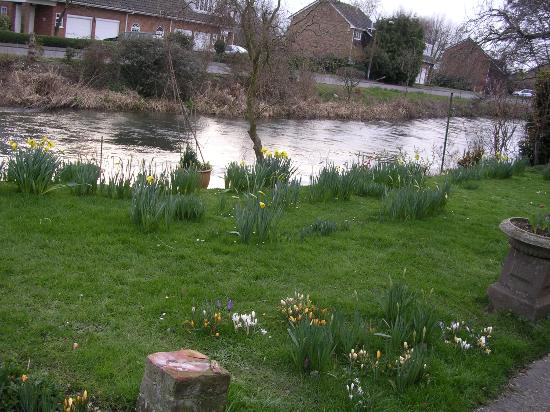 The River Avon Picture Of Salisbury Wiltshire TripAdvisor
