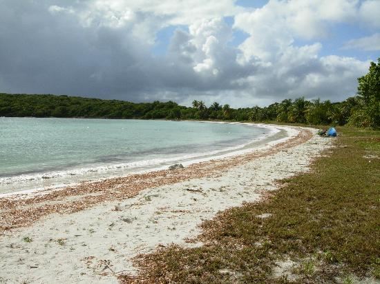 Media Luna Beach Isla De Vieques All You Need To Know