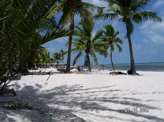 Smathers Beach Key West  Picture of El Patio Motel Key