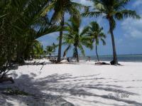 Smathers Beach Key West - Picture of El Patio Motel, Key ...