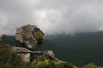 漢拏山國家公園照片