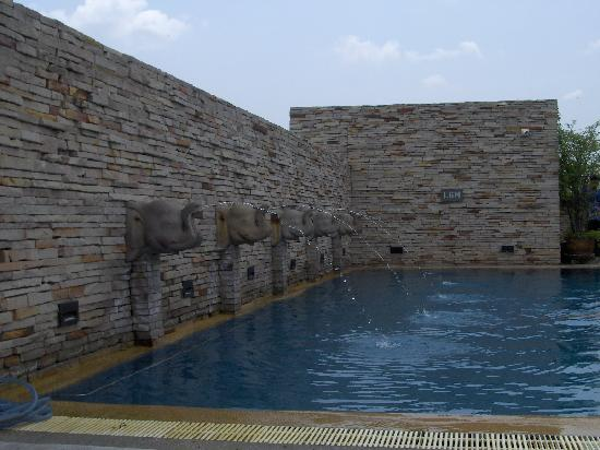 Buddy Lodge Hotel: The rooftop pool