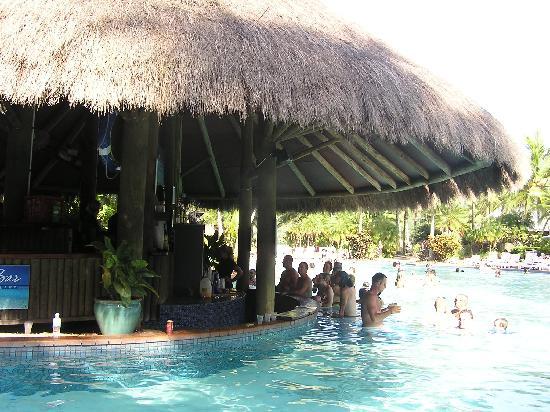 The Island Bar Swim Up Pool Bar Picture Of Hamilton