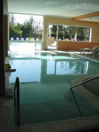 piscina interna ed esterna  Foto di Hotel Terme Villa Pace Abano Terme  TripAdvisor
