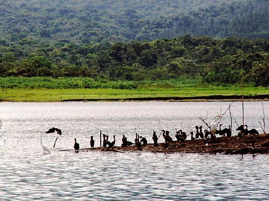 Lake Arenal el Castillo Costa Rica