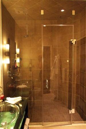 Steam Shower with Body Jets and Rain Head  Picture of