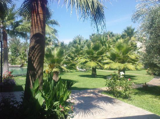 le grand jardin et la picsine  Photo de Lodge K Hotel  Spa Marrakech  TripAdvisor