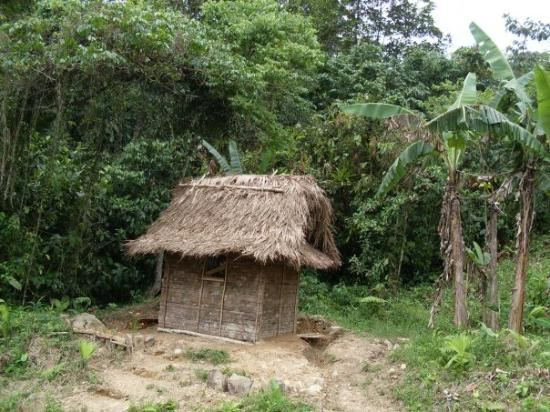 Santa Fe, Panamá: Typical Ngobe indian home in the highlands of Veraguas