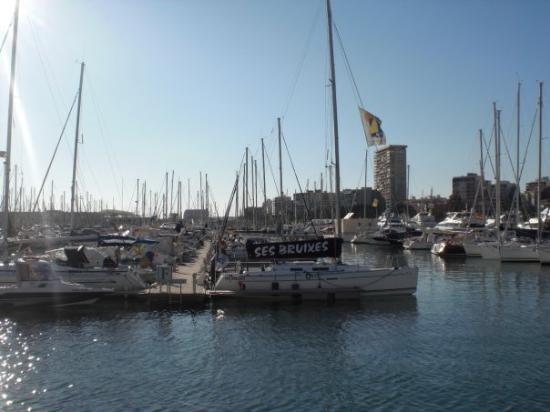 alicante harbour picture of