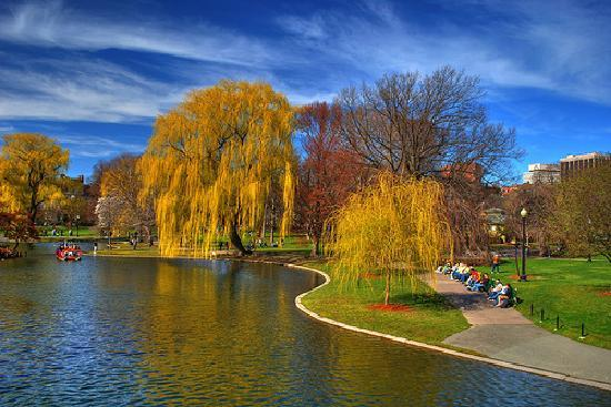 Piedmont Park Atlanta or Boston Common Boston state