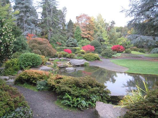 Washington Park Arboretum Seattle 2018 What To Know