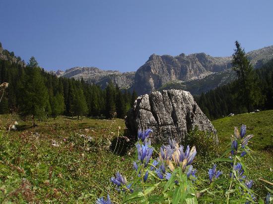 splendido paesaggio alpino