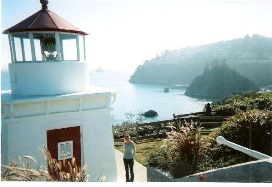 Patricks Point Cabins