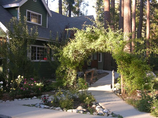 Idyllwild Cabins For Rent