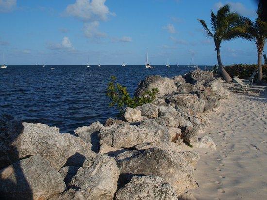 Key Largo 2017 Best Of Key Largo Tourism  Tripadvisor