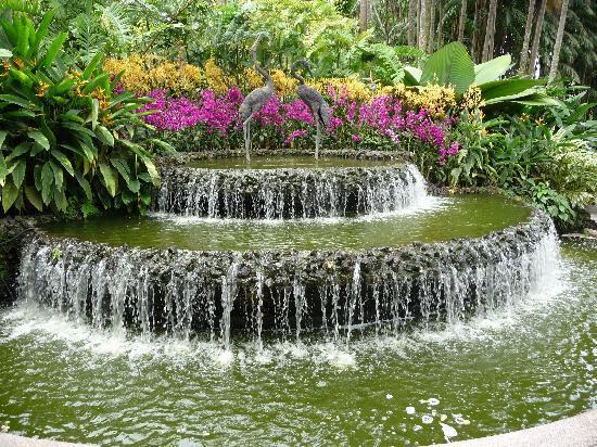Schöner Brunnen Im Botanischen Garten Picture Of Singapore