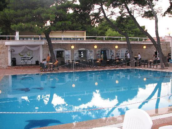 Piscine Htel Punta  Picture of Hotel Punta Vodice