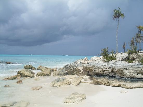 "Providenciales: What Caicos Dream Tours calls ""The Screen Saver"""