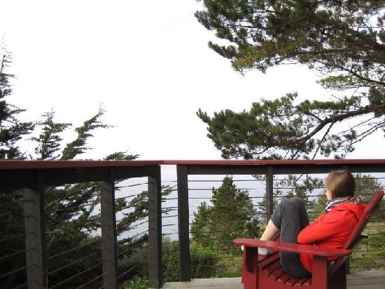 Pictures of Treebones Resort - Resort Photos